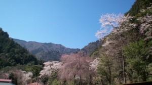 Yamanoharu