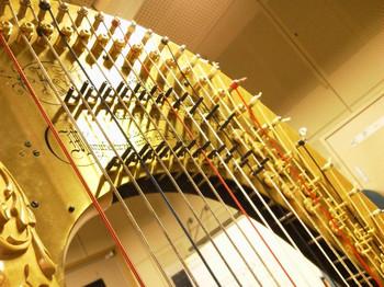 Harp4_2